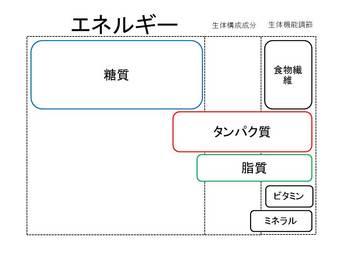 糖質中心の糖尿病指導食.JPG