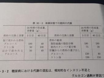 表30.2 ストライヤー.JPG